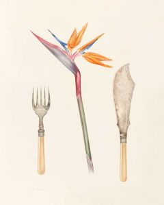 Deirdre Bean - Strelitzia and Fish Servers - 51x35cm