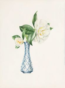 Deirdre Bean - Two Camellias - 36x26cm