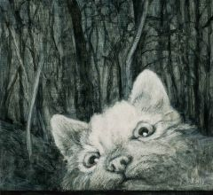 Kim Wilson - Bad Cat - 16.4x18cm