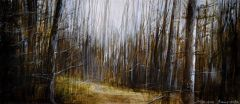 Min-Woo Bang - 'Looking Into Forest' - 11x24.5cm