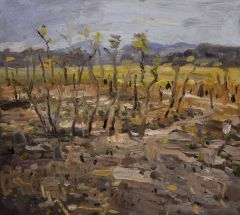 Steve Lopes - View to Ubirr - 34x38cm