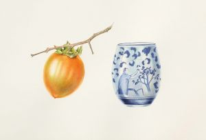 Deirdre Bean - Persimmon and Cup - 20x28cm