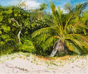 Peter Hudson - Finch Bay (Cooktown) - 25x30cm