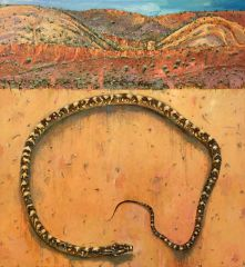 Peter Hudson - View of the East MacDonnell Ranges from Maleny - 200x184cm