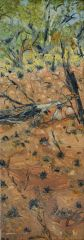 Peter Hudson - West MacDonnell Ranges - 46x16cm