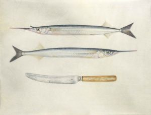 Deirdre Bean - Two Garfish and Knife - 36x25cm