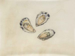 Deirdre Bean - Three Oysters - 19x25cm