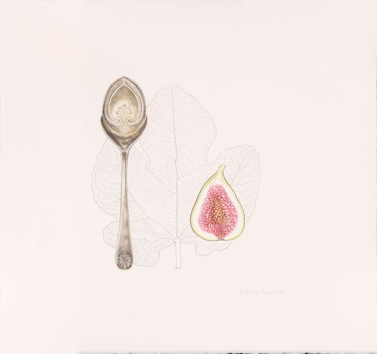 Deirdre Bean 'Spoon and Fig'